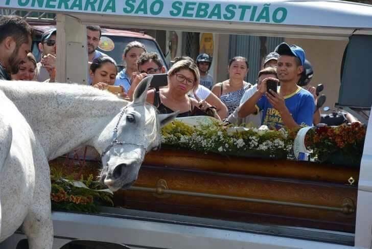 980x 3 2 - O último adeus de um cavalo ao seu falecido dono emocionou pessoas no mundo todo