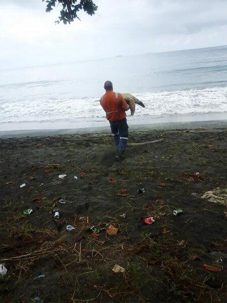 homem compra tartaruga 02 450x600 - Dois amigos compraram tartarugas em mercado de carnes para devolvê-las ao mar